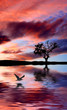 Fototapeten,landschaft,see,wolken,peace