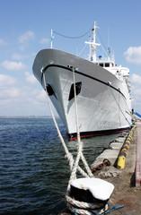 passenger ship anchored in port
