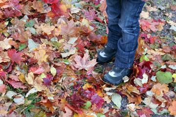 Boy's legs in autumn park.
