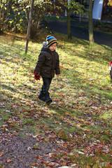 Cute boy walking in autumn park