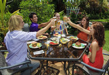 friends at a backyard barbeque raising their glasses in toast