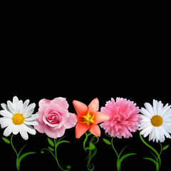 bright flower vector