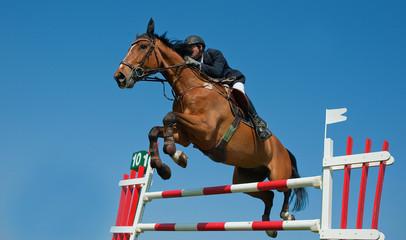 Jumping France 09bis