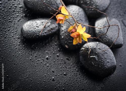 wet-zen-spa-stones