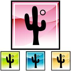 201004120810-cactus