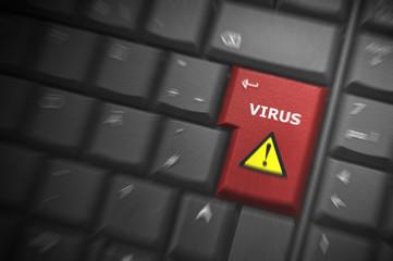 Virus Zoom
