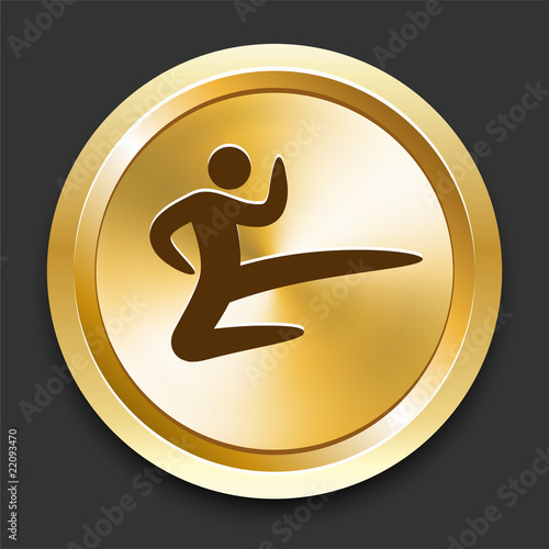 Karate on Golden Internet Button