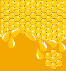 vector.  a honeycomb background with drops