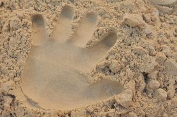 presser main a sable