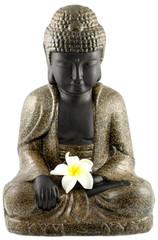 bouddha assis, fleur blanche frangipanier, fond blanc