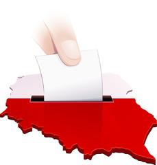 Élection polonaise (détouré)