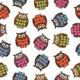 harlequin owls poster