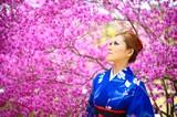 Fototapety 桜 着物 日本 女性