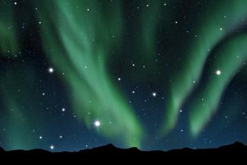 Aurora boreale su cielo stellato