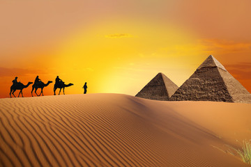 Pyramid, camel and sunset