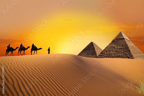 Pyramid, wielbłąd i zachód słońca