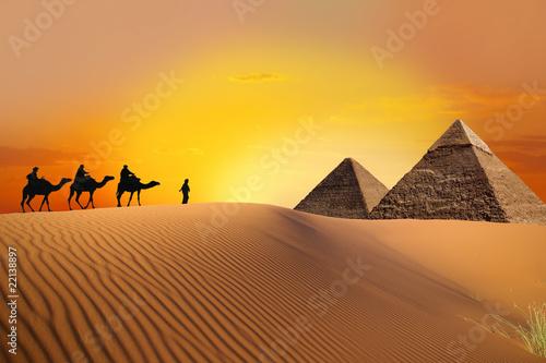 Fototapeten,reisen,afrika,sahara,sanddünen