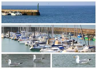 Port breton et mouettes