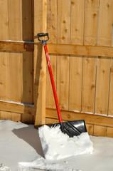 Backyard Fence and Shovel