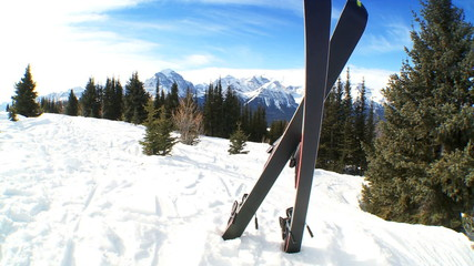 Crossed Carver Downhill Skis