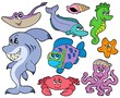 Ocean animals collection