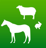 vector silhouettes horse, sheep and rabbit
