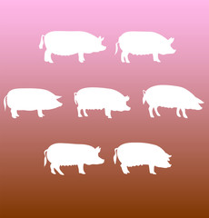 vector silhouettes pigs