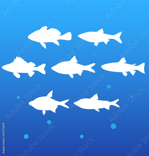 vector silhouettes fish