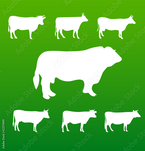 vector silhouettes cow