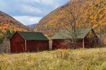 Catskill Mountains and Barn