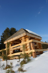 Blockhouse against a blue sky and pines in early sky