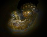 Galaxy Birth