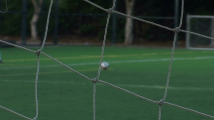 Soccer goal kick through net sof focus - HD