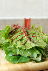 Red chard leaves