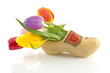 traditional Dutch wooden shoe with tulips over white background