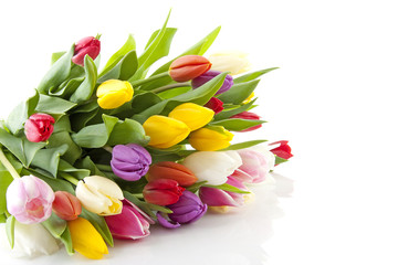 Bouquet of colorful Dutch tulips over white background