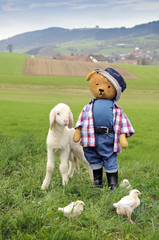 farmer teddy and his animals