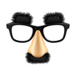 Funny disguise mask. Vector. - 22268897