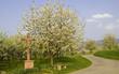 Wegkreuz im Frühling
