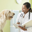 African female veterinarian with dog