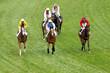 couses de chevaux