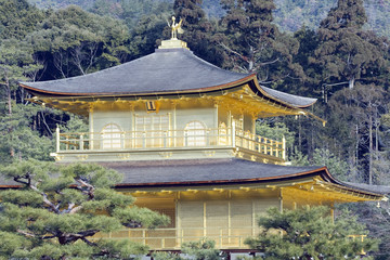 Kyoto - The Golden Pavilion