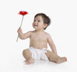 Studio shot of Hispanic baby holding flower