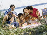 Multi-ethnic family having picnic