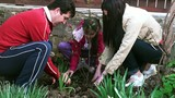 """Family planting a tree - """"Earth Day"""" poster"""