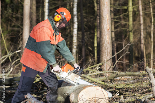 Holzfäller mit Kettensäge