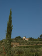 Villa in Tuscany amongst vineyards and an olive groves