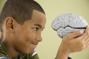 Mixed Race boy looking at model brain