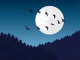 Bird migration vector poster