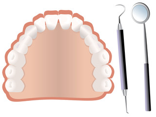 Teeth and dental tools vector